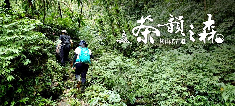登山旅遊節